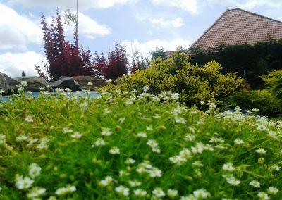 flowerpower-aranzacja-ogrodow-09-13