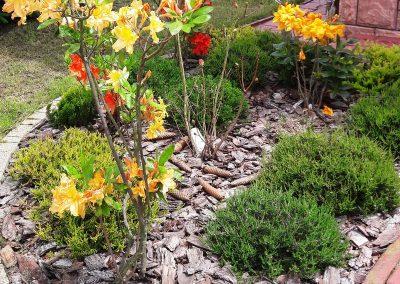flowerpower-aranzacja-ogrodow-19-03.jpg