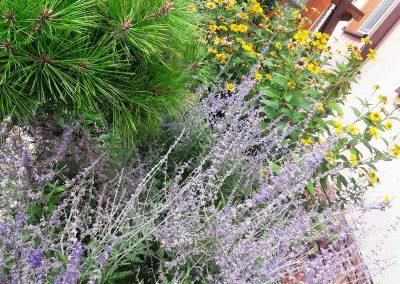 flowerpower-aranzacja-ogrodow-19-11.jpg