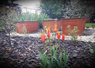 flowerpower-aranzacja-ogrodow-19-29.jpg