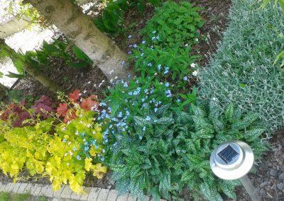flowerpower-aranzacja-ogrodow-21-11.jpg