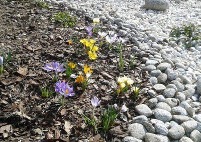 flowerpower-aranzacja-ogrodow-21-15.jpg