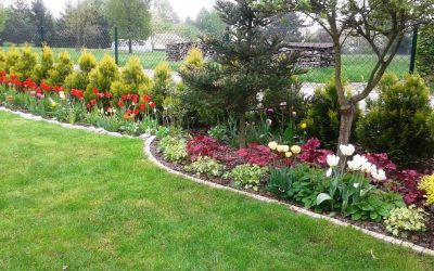 Aranżacja ogrodu 21