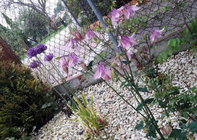 flowerpower-aranzacja-ogrodow-21-25.jpg