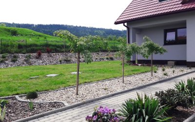 Aranżacja ogrodu 23