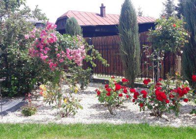 flowerpower-aranzacja-ogrodow-32-09.jpg