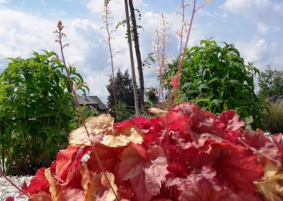 flowerpower-aranzacja-ogrodow-38-48